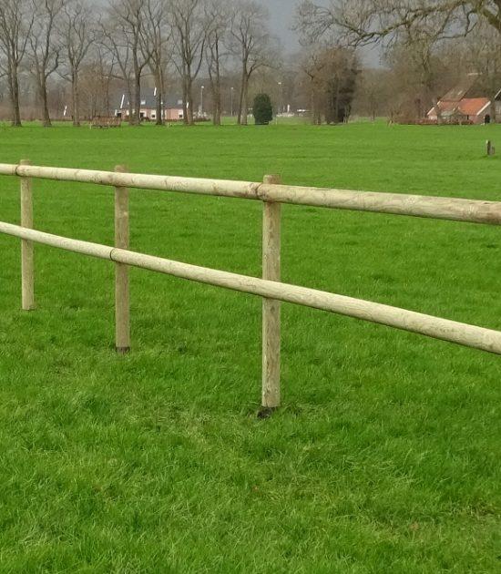 cloture chevaux bois
